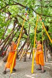 CHIANGMAI, THAILAND-APRIL 15 : Worship in Songkran Festival , A. Little monk crutches PHO tree instead for crutches long life  in Wat PhraThatJomThong. on April Stock Images