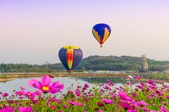 CHIANGRAI, THAILAND - November 02, 2016 : Hot air Balloons ready to rise into the sky in the sunset at SINGHA PARK CHIANGRAI Stock Photo