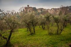 Chianni, Пиза, Тоскана - Италия стоковая фотография
