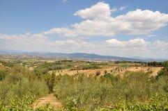 Chianti在托斯卡纳意大利 免版税图库摄影