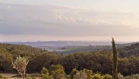 chianti выравниваясь около пейзажа san regolo стоковое фото
