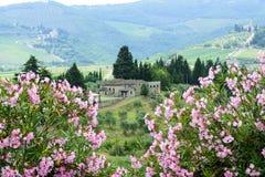 Chianti, Тоскана Стоковое фото RF