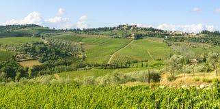 Chianti, Тоскана стоковое фото
