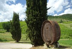 Chianti Fotos de Stock