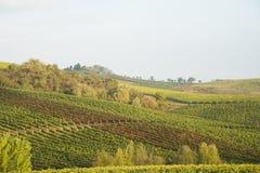 Chianti in Autumn Stock Photos