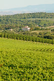 Chianti classico panorama Royalty Free Stock Photography