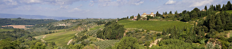 Chianti countryside. Panorama with olive trees and vineyards, Tuscany, Italy stock images