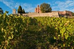 Chianti de château de Brolio photo libre de droits