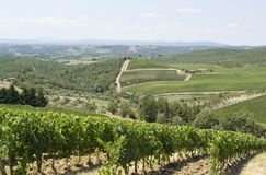Chianti en Toscane photo stock
