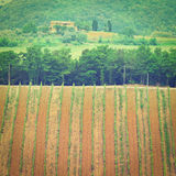 Chianti. Hill of Tuscany with Vineyard in the Chianti Region, Instagram Effect royalty free stock images