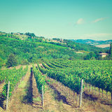Chianti Royalty Free Stock Images