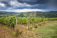 Chianti hills with vineyards. Tuscan Landscape between Siena and Florence. Italy royalty free stock images