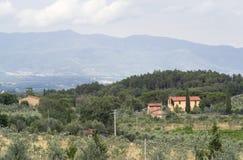 Chianti i Tuscany fotografering för bildbyråer