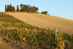 Chianti landscape Stock Photo