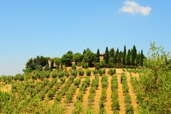 Chianti Region Stock Photos