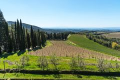 Chianti Region, Italy - April 21, 2018: Farmland rural landscape, cypress trees, vineyards and olive trees from Castello di Brolio. Chianti Region, Italy - April stock images