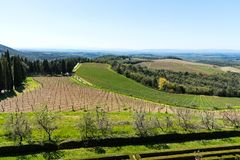 Chianti Region, Italy - April 21, 2018: Farmland rural landscape, cypress trees, vineyards and olive trees from Castello di Brolio. Chianti Region, Italy - April royalty free stock photo