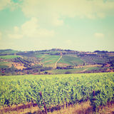 Chianti Region Stock Images