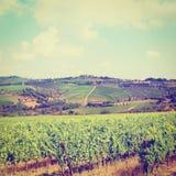 Chianti Region Stock Images