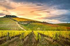 Chianti Region, Tuscany, Italy. Vineyards in autumn. Farmhouses in background stock image