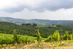 Chianti, Toscana Imágenes de archivo libres de regalías