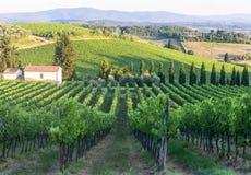 Chianti, Toscana Fotografía de archivo libre de regalías