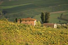 Chianti, Toscana, Italia fotografia stock libera da diritti