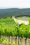 Chianti, Toscane Images libres de droits