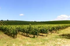 Chianti, Toscane photos stock