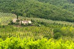 Chianti (Toscane), vieille ferme images stock