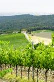 Chianti, Toscanië Royalty-vrije Stock Afbeeldingen
