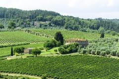 Chianti, Toscanië Royalty-vrije Stock Afbeelding