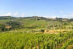 Chianti, Toskana Stockbilder