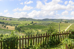 Chianti, Toskana Stockfotos