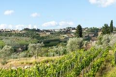 Chianti, Toskana Stockfotografie