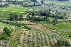 Chianti, Toskana Stockbild