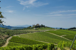 Chianti Tuscan vineyards Stock Photography