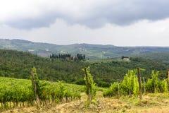 Chianti Tuscany Royaltyfria Bilder