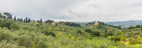 Chianti, Tuscany. Landscape in Chianti (Florence, Tuscany, Italy) with olive trees and cypresses at summer royalty free stock images