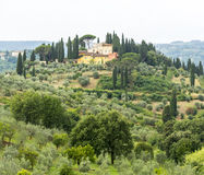 Chianti, Tuscany. Landscape in Chianti (Florence, Tuscany, Italy) with olive trees and cypresses at summer stock photo