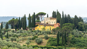 Chianti, Tuscany. Landscape in Chianti (Florence, Tuscany, Italy) with olive trees and cypresses at summer royalty free stock photography