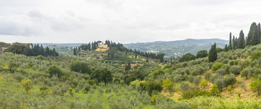 Chianti, Tuscany. Landscape in Chianti (Florence, Tuscany, Italy) with olive trees and cypresses at summer stock images