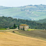 Chianti, Tuscany. Landscape in Chianti (Florence, Tuscany, Italy) with vineyards and cypresses at summer royalty free stock photography
