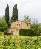 Chianti, Tuscany. Landscape in Chianti (Florence, Tuscany, Italy) with vineyards and cypresses at summer stock photos