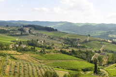 Chianti, Tuscany Royalty Free Stock Photo