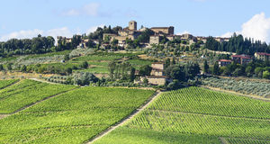 Chianti, Tuscany. Landscape in Chianti (Florence, Tuscany, Italy) with vineyards at summer stock images