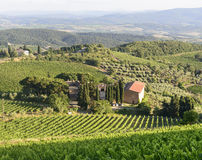 Chianti, Tuscany. Landscape in Chianti (Florence, Tuscany, Italy) with vineyards at summer stock photography