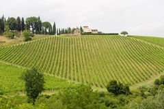 Chianti (Tuscany), old farmhouse stock image