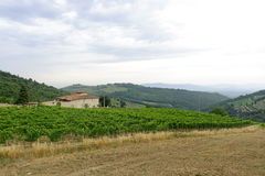 Chianti (Tuscany), old farmhouse Stock Photography