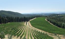 Chianti in Tuscany Royalty Free Stock Photography
